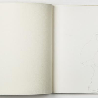 Cuaderno Inundados4.jpg